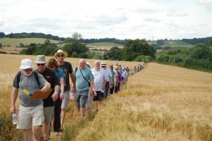 Priory Fields walk