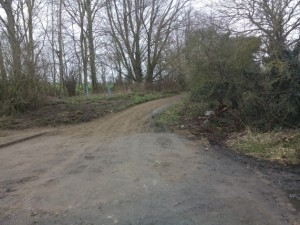 Gipsy lane after improvement_tn