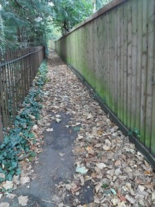 st johns path without railings_tn